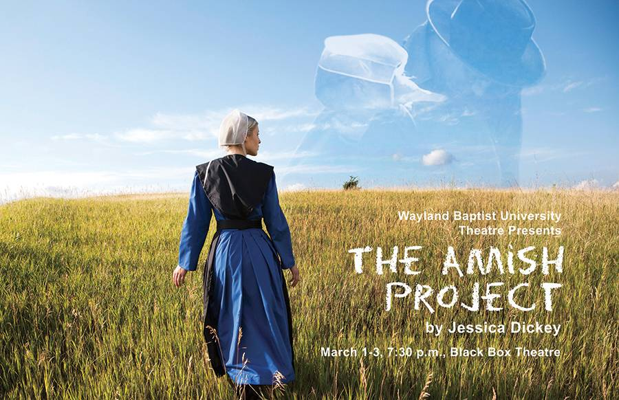 Promotional Poster for The Amish Project