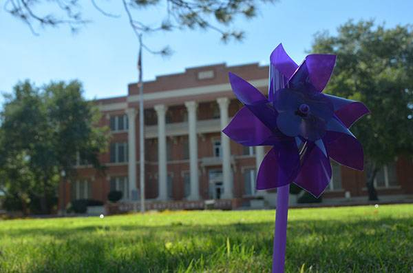 Purple pinwheel in front of Gates Hall